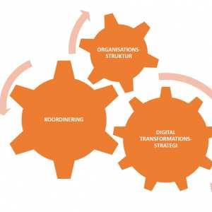 Coordination of digital transformation